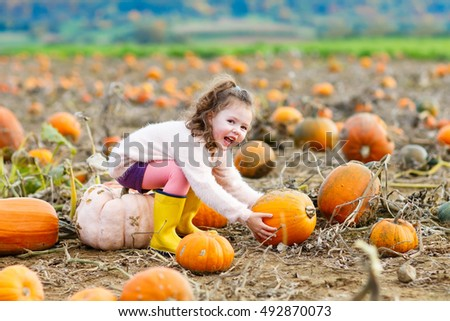Happy little kid girl having fun with farming on a pumpkin patch. Traditional family festival with children, thanksgiving and halloween concept. Cute farmer with big vegetables.