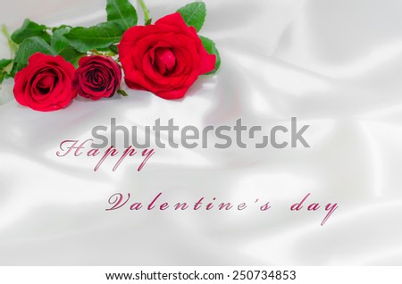 happy valentine's day and rose on white cloth background