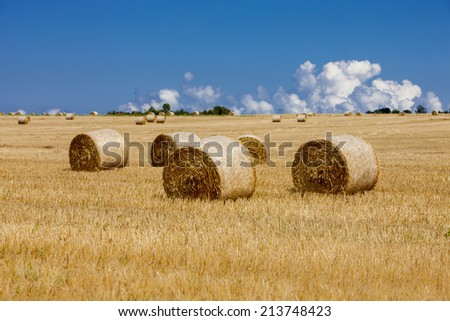 hay bales in a beautiful landscape of Normandy, France