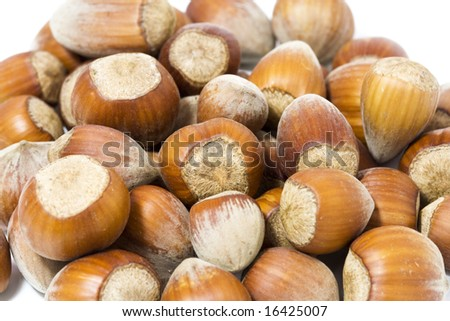 hazel nuts background
