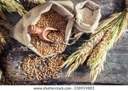 Healthy ingredients for rolls and bread with whole grains