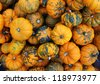heap of tiny spotted pumpkins - stock photo