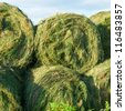 Heap of unwrapped hay bales close-up - stock photo