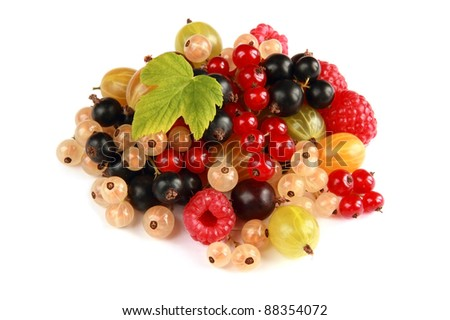 heap of various summer berries of different colors