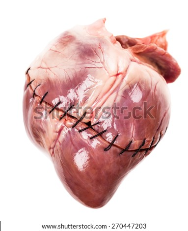 heart with suture close-up isolated on white background
