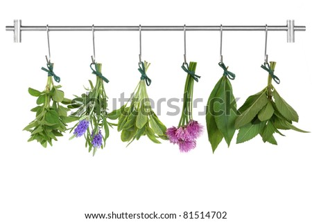 Herb leaf and flower sprigs tied in bunches drying on a stainless steel rack with hooks, oregano, lavender, variegated sage, chives, bay and mint, isolated over white background.