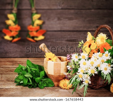 herbs on wooden background