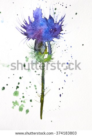 Watercolor thistle stock vector 262372232 shutterstock - High resolution watercolor flowers ...