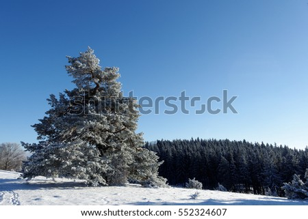 Hiking trail in the snow at Albstadt-Burgfelden, Germany