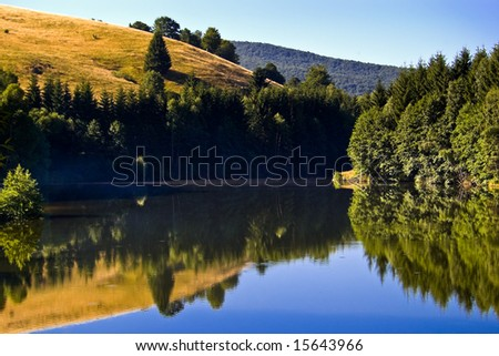 hill with trees reflection on mountain lake
