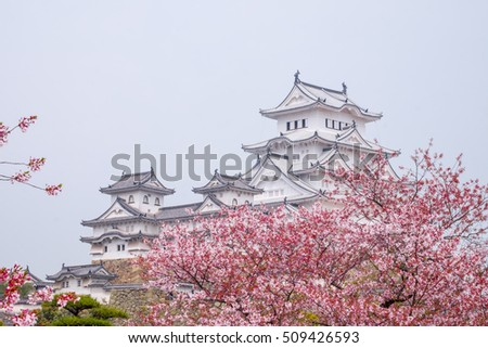 himeji castle surrounded by cherry blossom. This is a UNESCO world heritage site.