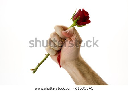 Holding a red rose tightly