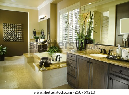 Home Bath Room Interior Design House Architecture Contemporary Stock ImagesNew Homes