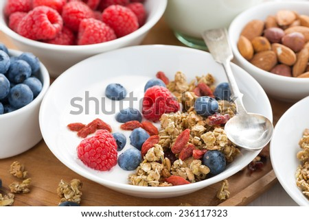 homemade muesli with fresh berries and yogurt for breakfast, close-up, horizontal