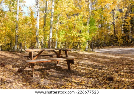 Hope Valley Campground in fall color