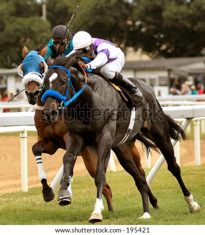 Horse Racing in Bridgetown, Barbados. Sandy Lane Gold Cup