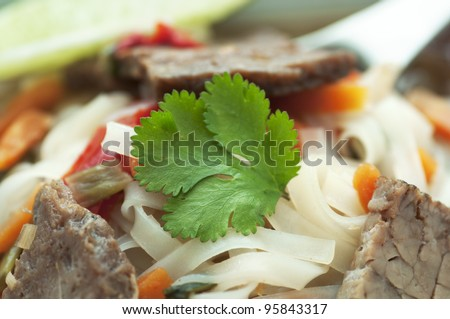 Hot Asian inspired noodle soup with spicy beef and vegetables