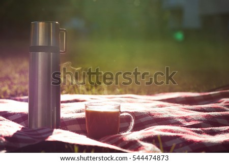 Hot drink in flask and cup or tea or coffee on a picnic blanket in park