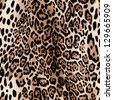hot leopard skin seamless background - stock photo