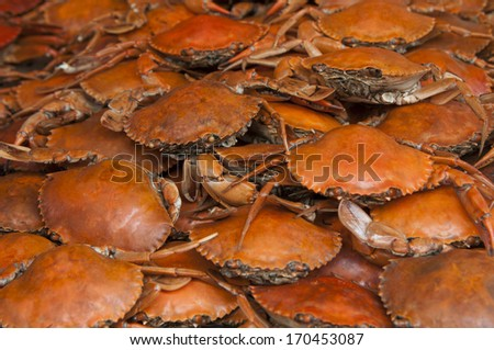 Hot steamed Blue Crabs on market