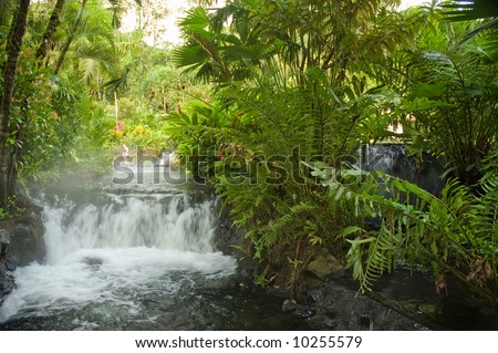 Hotsprings running through the jungle
