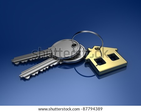 House key isolated on color background