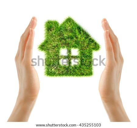 House made of green grass in female hands
