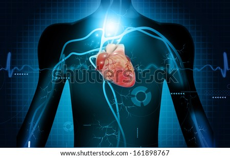 Human heart anatomy on abstract digital background