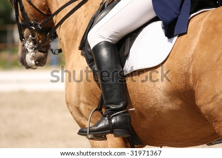 human leg on the horseback