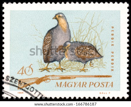 "HUNGARY - CIRCA 1964: A stamp printed in Hungary from the ""Hunting"" issue shows a grey partridge and hunting rifle, circa 1964"