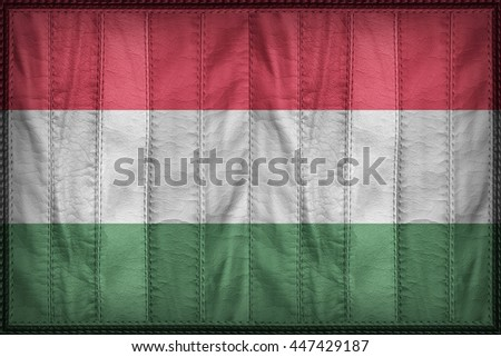 Hungary flag pattern on synthetic leather texture, 3d illustration style