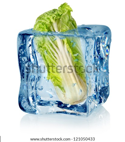 Ice cube and chinese cabbage isolated on a white background