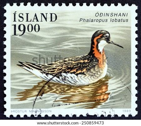 "ICELAND - CIRCA 1989: A stamp printed in Iceland from the ""Birds "" issue shows Red-necked phalarope (Phalaropus lobatus), circa 1989."