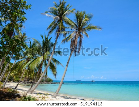 Idyllic tropical beach with white sand and palm trees in sunny day