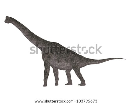 Illustration of a Brachiosaurus (dinosaur species) isolated on a white background