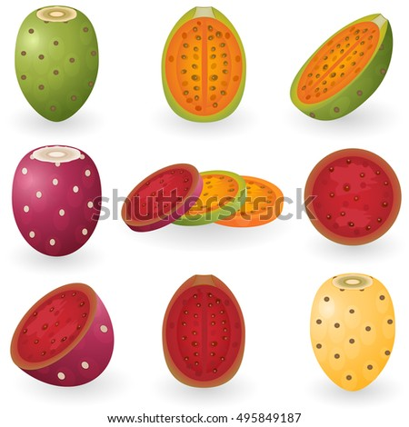 prickly pear fruit fruit clipart