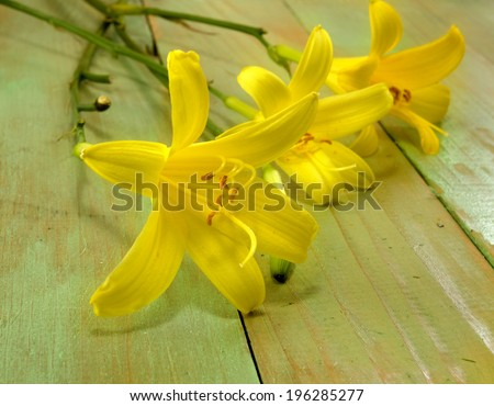 image of three lilies on a wooden table