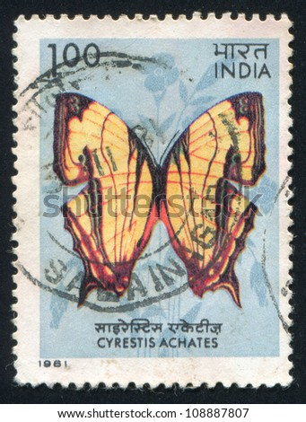 INDIA - CIRCA 1981: stamp printed by India, shows  butterfly, circa 1981