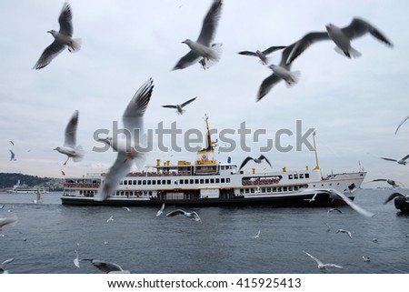 Istanbul,Turkey - December 12,2015 : Ferry and seagulls
