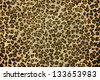 Jaguar skin background - stock photo