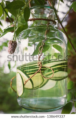 Jar of organic cucumber water dangling from a wisteria vine in the sunlight