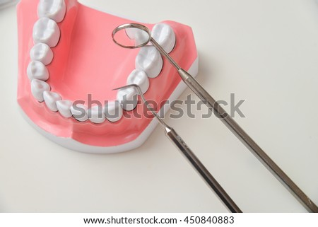 jaw model and dental tool set