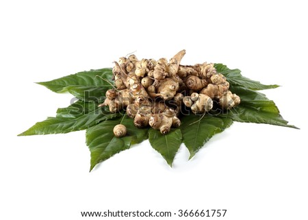 Jerusalem artichokes on leaves