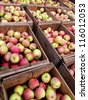 Just harvested apples in crates at orchard - stock photo