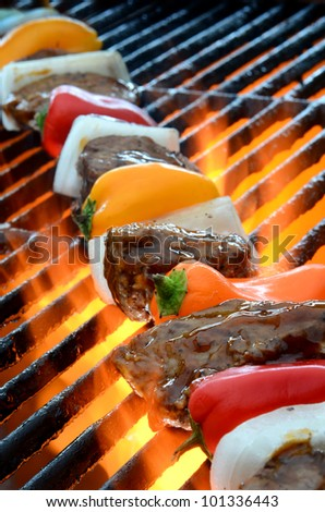 Kabob on BBQ grill with hot flames