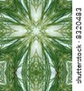 kaleidoscope cross:  ice on pine needles 6 - stock photo