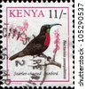 KENYA - CIRCA 1993: A stamp printed in Kenya shows Scarlet-chested Sunbird - Nectarinia senegalensis, circa 1993 - stock photo