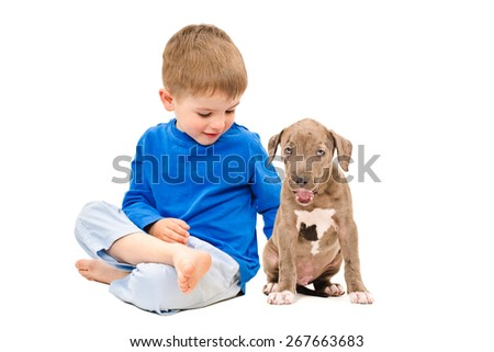 Kid sitting with a puppy breed pit bull isolated on white background
