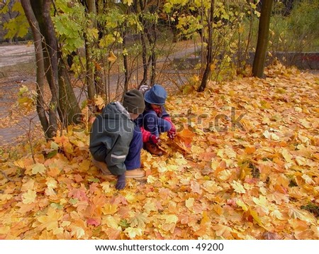 Kids collecting leaves