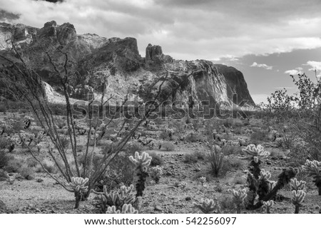 Kofa Mountains Wilderness in Yuma County near Quartzite Arizona photographed in black and white.